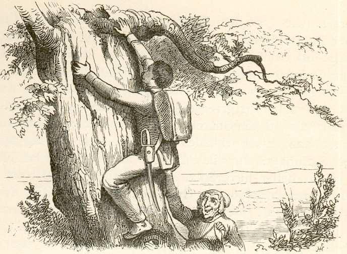 Illustration von Vilhelm Pedersen zu dem Märchen das Feuerzeug von Hans Christian Andersen