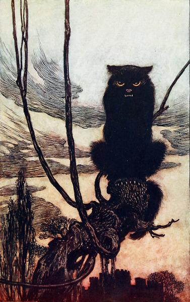 Illustration von Arthur Rackham zu dem Märchen Jorinde und Joringel. Die schwarze Katze ist die Begleiterin der Hexe.