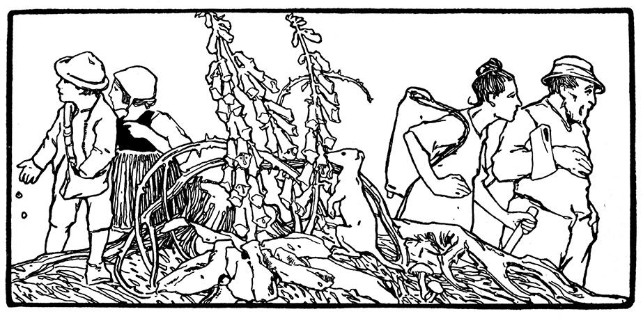 Hänsel und Gretel werden von ihren Eltern in den Wald geführt. Illustration von Otto Ubbelohde